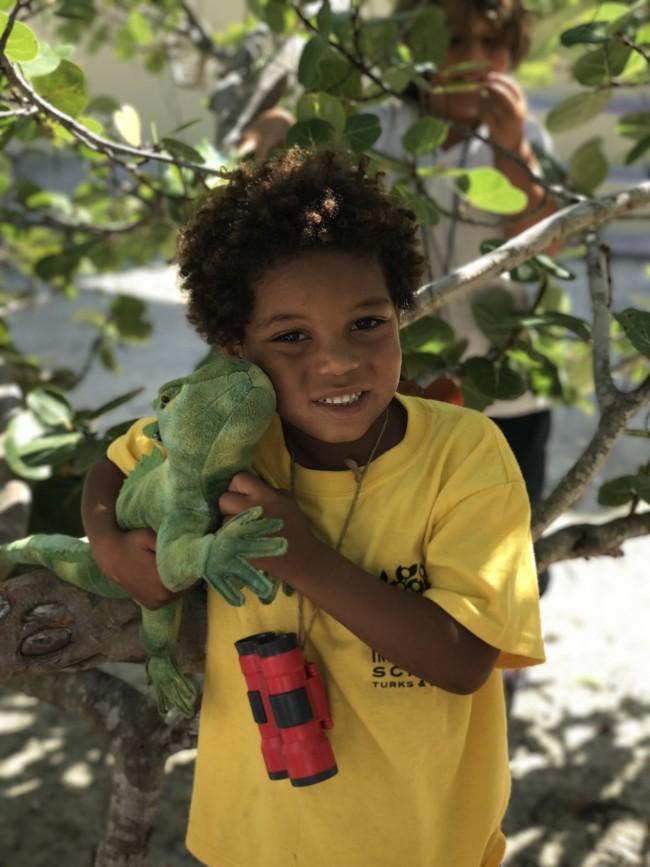 Turks and Caicos Rock Iguanas