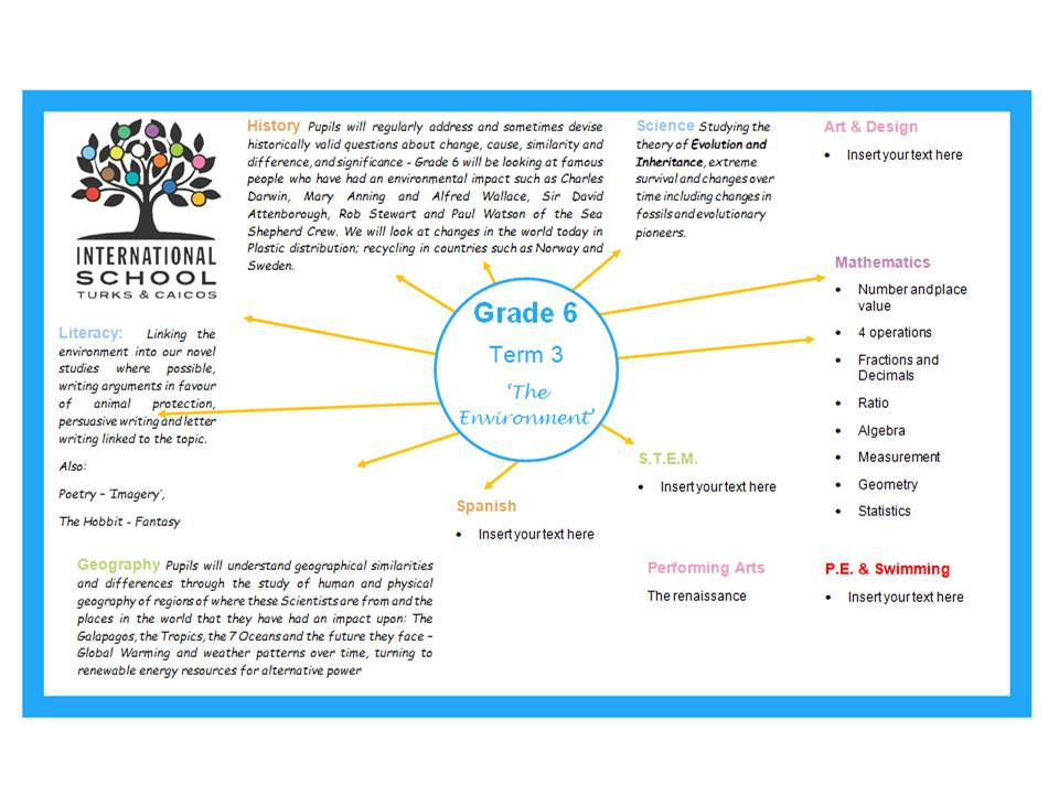 Grade 6 Term 3 Topic Overview