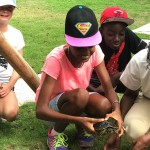 Grade 6 visit the Nature Discovery Center, Amanyara