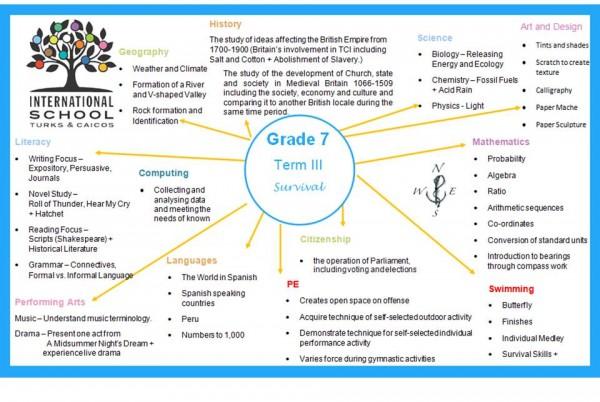 Grade 7 Topic Term 3